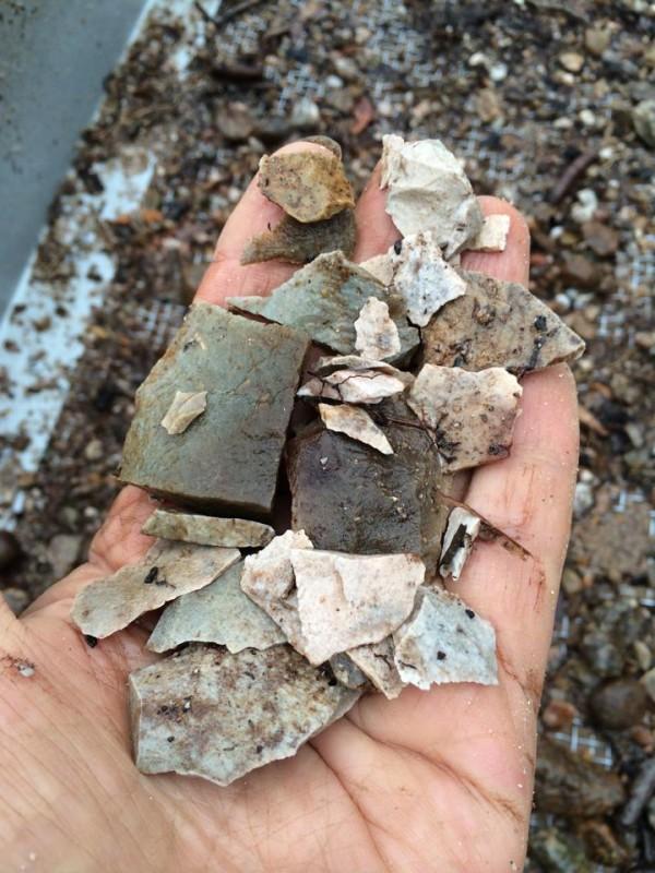 Lokal 2, Skånskogen. Här kommer stora mängder slagen sten i olika bergarter och även spår av tillverkning av yxor. Foto: Kerstin Westrin