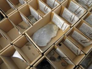 Stenredskap i kvarts och rester från tillverkning från en av de mesolitiska boplatserna vid Svartkärret.
