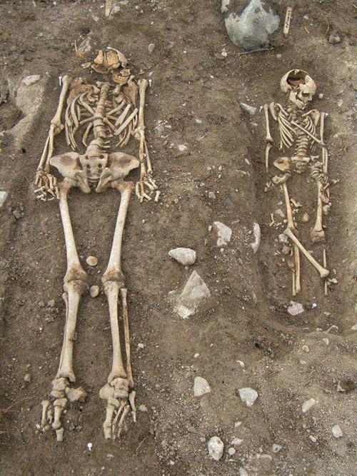 Mansgrav med intilliggande barngrav. Kropställningen tyder på att båda individerna begravts i ett öppet utrymme, sannolikt i kista.